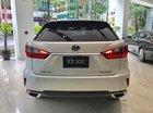 Bán xe Lexus RX 300 sản xuất năm 2019, màu trắng, nhập khẩu