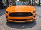 Bán xe Ford Mustang 2.3 EcoBoost Fastback năm 2019, màu vàng, xe nhập