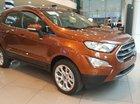 Ford EcoSport siêu ưu đãi tặng BHVC, phim, camera, tiền mặt