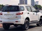 Bán Chevrolet Trailblazer đời 2019, màu trắng, nhập khẩu