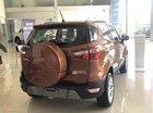 Bán ô tô Ford EcoSport Titanium 1.5L AT sản xuất năm 2019, màu nâu, 650tr