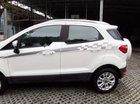 Bán xe Ford EcoSport đời 2017, màu trắng, nhập khẩu nguyên chiếc, 570 triệu