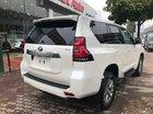 Bán Toyota Land Cruiser Prado đời 2019, màu trắng, xe nhập