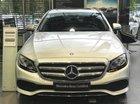 Cần bán gấp Mercedes E250 sản xuất 2017, màu bạc