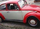 Bán Volkswagen Beetle 1974, màu đỏ, xe nhập, chính chủ