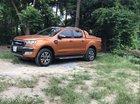 Bán Ford Ranger Wildtrak 2.2 2017, nhập khẩu nguyên chiếc chính chủ, giá tốt