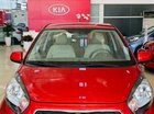 Bán ô tô Kia Morning 1.25L AT đời 2019, màu đỏ, giá chỉ 339 triệu