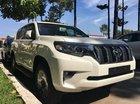 Bán Land Cruiser Prado - đẳng cấp mọi địa hình. Xe nhập Nhật có sẵn giao ngay