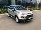 Chính chủ bán Ford EcoSport Titanium 2017, màu xám (ghi), mới chạy 9000km