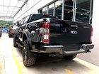 Ford Quảng Ninh bán Ford Ranger Raptor sản xuất năm 2019, màu đen, nhập khẩu nguyên chiếc