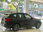 Cần bán BMW X3 xDrive 30i M Sport sản xuất năm 2019, nhập khẩu