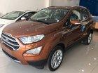 Bán xe Ford EcoSport sản xuất 2019, giảm tiền mặt, tặng phụ kiện