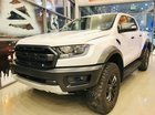 Cần bán Ford Raptor năm 2019, xe nhập, giá ưu đãi nhất thị trường