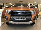 Ford Ranger Wildtrak 2019 nhiều màu, nhận xe ngay, tặng bộ phụ kiện giá trị, LH: 0939336453
