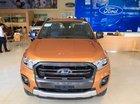Bán Ford Ranger Wildtrak năm 2019, nhập khẩu, 880 triệu