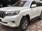 Bán Toyota Land Cruiser Prado 2019, màu trắng, xe nhập