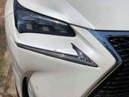 Bán xe Lexus NX năm 2016, nhập khẩu9
