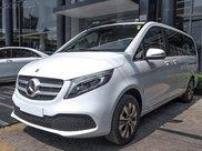 V-Class Mercedes-Benz V250 Luxury, dòng xe MPV 7 chỗ sang trọng, nhập khẩu nguyên chiếc, có xe giao ngay5