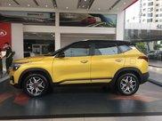 Kia Seltos Luxury 2021, giá chỉ 659 triệu1