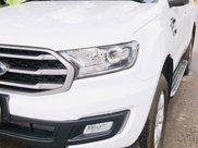 Bán xe Ford Everest năm 2019, giá 850 triệu1