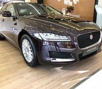 Bán xe Jaguar XF Prestige nhập mới giá tốt, giá xe Jaguar XF 2020 mới, đại lý Jaguar LandRover chính hãng