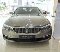 Cần bán BMW 530i năm sản xuất 2019, xe nhập
