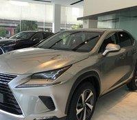 Bán giảm giá cuối năm chiếc xe Lexus NX300, sản xuất 2019, màu bạc, nhập khẩu nguyên chiếc