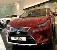 Bán Lexus NX 300 2020, màu đỏ, nhập khẩu