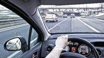 Những kỹ năng cần thiết khi xin vượt xe