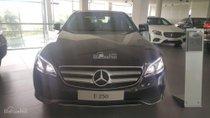 Bán Mercedes E250 siêu sang trọng, đẳng cấp thượng hạng, ưu đãi giá cực tốt