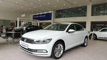 Volkswagen Passat Bluemotion - Đại lý VW Saigon 0933689294 Long