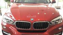 BMW Phú Mỹ Hưng - BMW X6 có xe giao ngay, hỗ trợ vay mua xe nhanh chóng, liên hệ 0938805021 - 0938769900