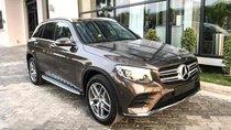 Bán Mercedes GLC 300 AMG 2019 - SUV cao cấp- Hỗ trợ 80% Bank - Ưu đãi hấp dẫn