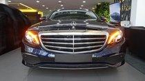 Bán Mercedes-Benz E200 New model 2019 - Hỗ trợ bank 80% - Ưu đãi tốt trong tháng. LH: 0919 528 520