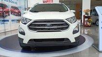 Bán xe Ford Ecosport giảm giá sốc, liên hệ ngay Xuân Liên 0963 241 349