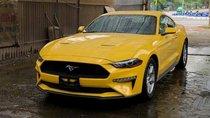 Ford Mustang giá hơn 2 tỷ đồng, chỉ có duy nhất 2 chiếc tại Việt Nam