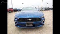 Bán Ford Mustang 2.3 Ecoboost năm 2018, màu xanh lam, nhập Mỹ giá cực tốt