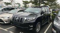 Cần bán Toyota Prado sản xuất 2018, màu đen, nhập khẩu nguyên chiếc