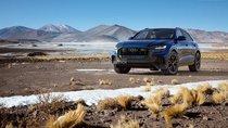 Audi Q8 2019 đến Mỹ với chỉ một tùy chọn động cơ duy nhất