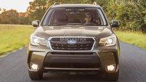 Hotline Subaru 0929009089, bán xe Subaru Forester 2.0 Eyesight 2019 đủ màu, giao xe toàn quốc