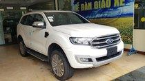 Ford Ninh Bình, đại lý 2S bán Ford Everest nhập Thái, các phiên bản, đủ màu. KM 1 năm bảo hiểm, LH: 0975434628