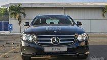 Bán Mercedes E250 năm 2019, màu đen