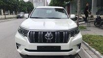 Bán xe Toyota Land Cruiser đời 2018, màu trắng, nhập khẩu - Mr Trung 0988599025