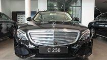 Cần bán xe Mercedes C250 sản xuất năm 2018