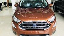 Bán Ford Ecosport 2019, quà tặng BHVC, dán phim, bệ bước, camera hành trình