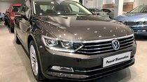 Bán Volkswagen Passat nhiều màu, giao ngay toàn quốc + hỗ trợ vay 80%-Gọi 090.364.3659