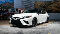 Sau Toyota Camry và Avalon, xe hiệu suất TRD và AWD sẽ xuất hiện nhiều hơn