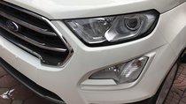 Bán Ford EcoSport Ecosport 1.0l Ecoboost đời 2019, màu trắng, giá 645tr hỗ trợ ngân hàng, giao xe toàn quốc