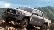 Toyota Land Cruiser, Tacoma cùng Lexus LX570 dính lỗi triệu hồi