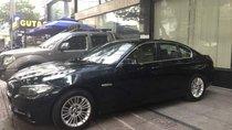 Bán xe BMW 5 Series 520i đời 2014, màu đen, xe nhập